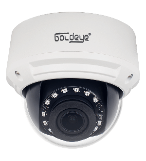 Camera Goldeye HDVI Hybird 8.0MP GE-HFD180